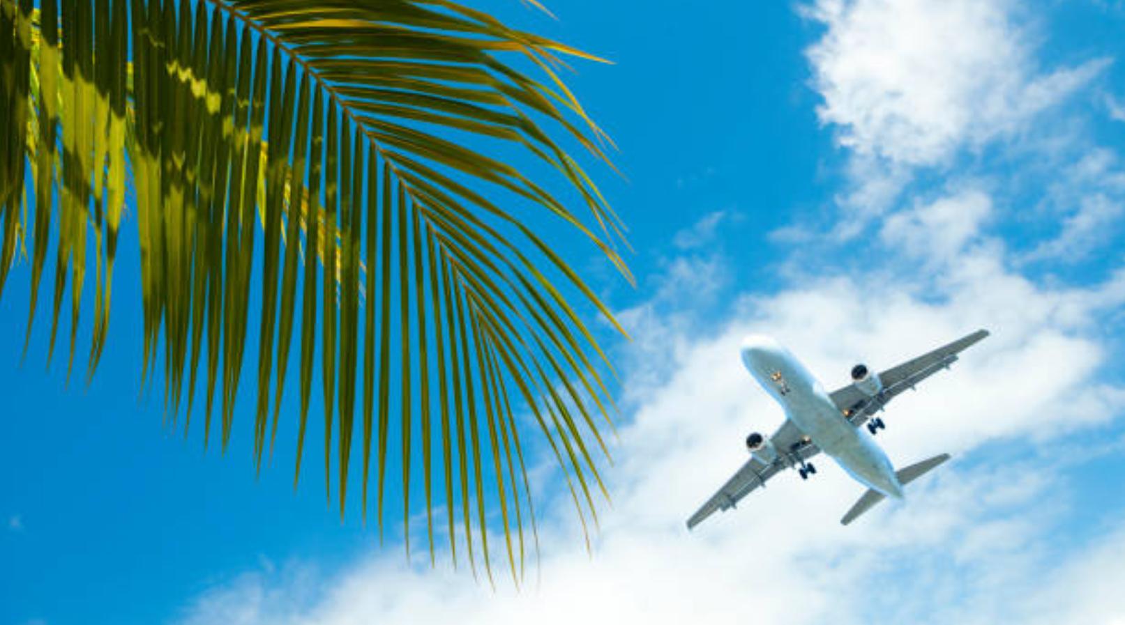 Best 2019 Maui Air Travel Hacks