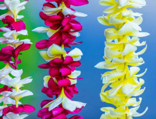 Tradition of the Hawaiian Lei