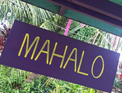 Useful Hawaiian Words and Pronunciation for Visitors