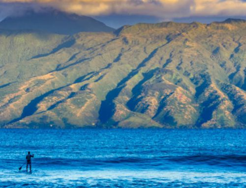 Top 10 Most Frequently Asked Maui Visitor Questions