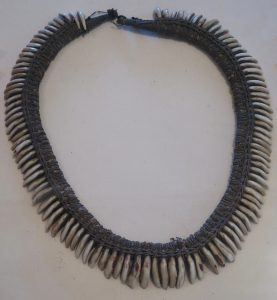 dog tooth lei