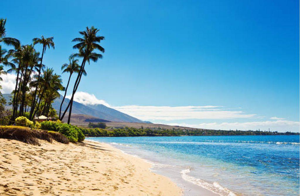 a Maui beach