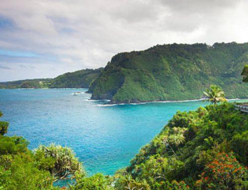 An Eco-friendly Vacation on Maui