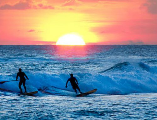 The Art of Surfing, Then and Now