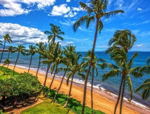 Maui: Best Vacation Itinerary During Covid-19